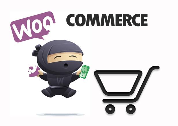 WooCommerce eCommerce introductie WooCommerce is een gratis eCommerce plugin die je de mogelijkheid biedt alles te verkopen op een mooie manier.